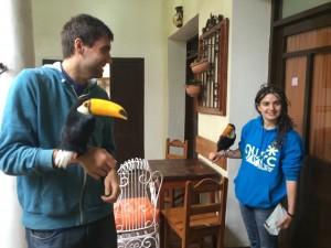 Chris and Eleanor make friends with the resident toucans.